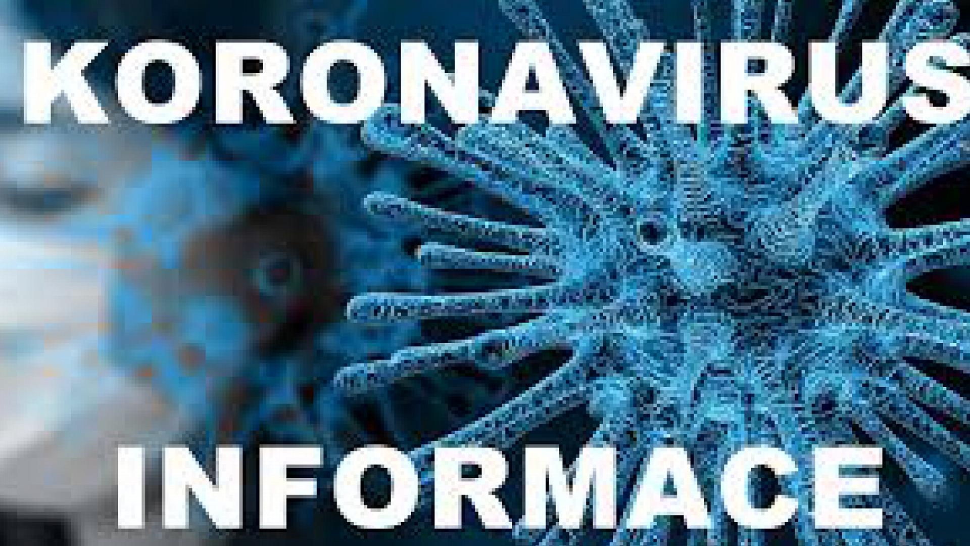 internet - Koronavirus