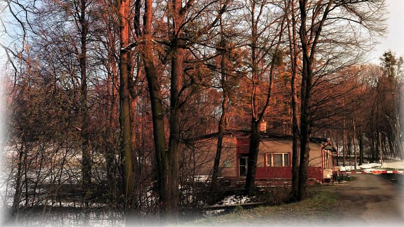 Jiřina Winterová - Fotbalové hřiště
