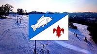 Vlajka obce Rybí